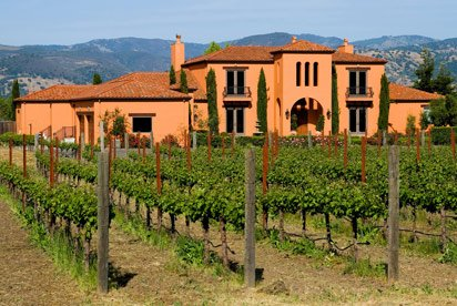 Wine Yard